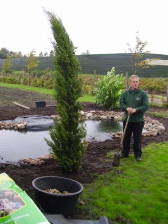 Tuin laten ontwerpen op maat geheel naar uw wensen for Tuin laten ontwerpen